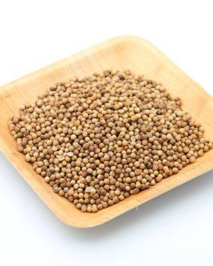 graines de coriandre etal des epices